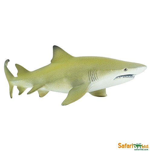 Ltd Sharks Safari Toob (Safari Ltd. Sea Life - Lemon Shark - Phthalate, Lead and BPA Free - for Ages 3+)
