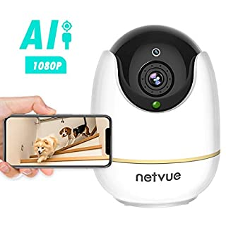 Dog Camera - 1080P Dog Camera with Phone App, Pan/Tilt/Zoom Home Camera with 2-Way Audio, AI Human Detection, Night Vision, Cloud Storage/TF Card, Compatible with Alexa, Camera for Pets/Baby