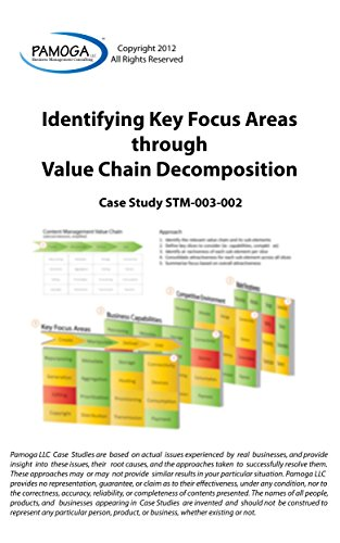 Identifying Key Focus Areas through Value Chain Decomposition (Pamoga LLC Book 6)