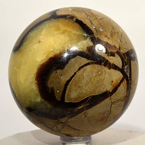 64mm Septarian Dragon Stone Sphere Natural Nodule Quartz Mineral Polished Ball Calcite Aragonite Smooth Fossil Crystal Stone - Madagascar + Stand