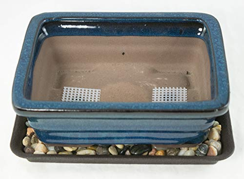 Blue Ceramic Bonsai Pot - 8