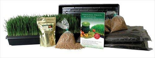 hydroponic wheatgrass kit - 4