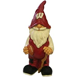 Wisconsin 2008 Team Gnome