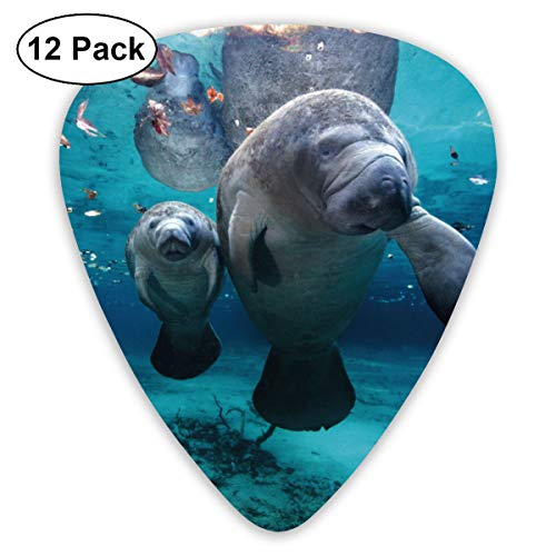WeaiDanu Ocen Life Under Water Sea Animal Manatee Classic Guitar Picks (12 Pack) for Electric Guitar, Acoustic Guitar, Mandolin, and Bass (Electric Animals Sea)