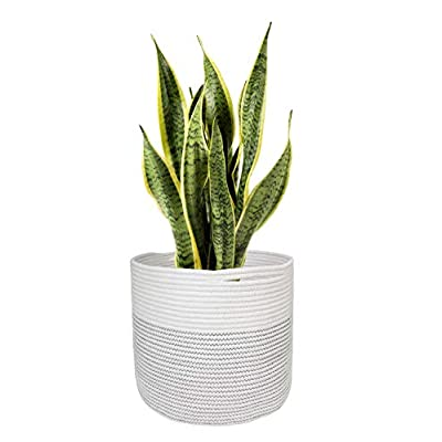 "TIMEYARD Woven Cotton Rope Plant Basket for 9in to 11in Flower Pot Floor Indoor Planters, 12"" x 12"" Storage Basket Organizer Modern Home Decor : Garden & Outdoor"