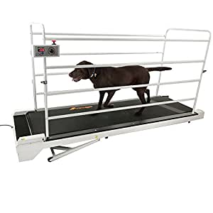 GoPet Treadmill Giant (<264lbs)