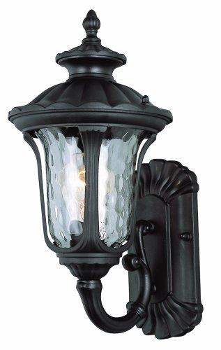 Trans Globe Lighting 5910 BK Outdoor Knolls 15