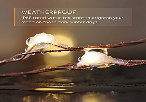 33-ft-White-LED-Decorative-Lights-Eufy-Starlit-String-Light-Indoor-and-Outdoor-IP65-Water-Resistant-Decoration-for-Bedroom-Patio-Holiday-Wedding-and-Party-Copper-Wire