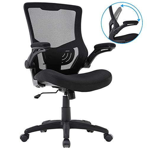 Homefice Chair Mesh Desk