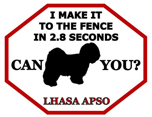 - Top Shelf Novelties I Make It to The Fence in 2.8 Seconds Can You? Lhasa Apso (Silhouette) Laminated Dog Sign (Includes Bonus I Love My Dog Decal) SP1484 (Attn: This is Not an Octagon Shaped Sign)