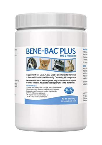Bene-Bac Plus Prebiotic Pet Powder, 1-Pound