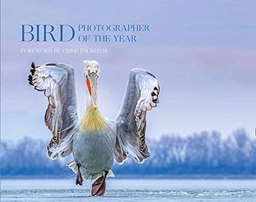 Bird Photographer of the Year: Collection 4 (Bird Photographer of the Year)
