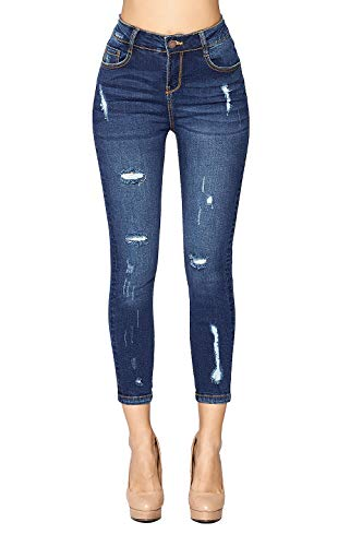 Blue Age Women's Stretch Ripped High Rise Skinny Jeans (JP1095A_MD_9)