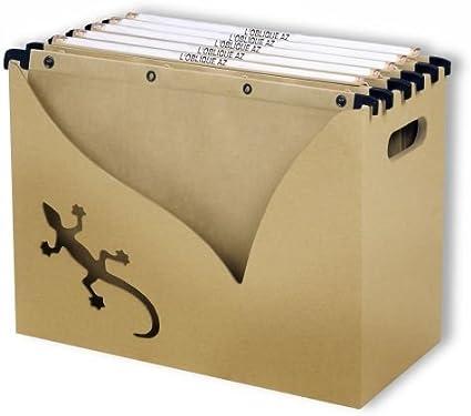 LOblique TOUAREG - Caja archivadora de carpetas colgantes (5 carpetas): Amazon.es: Oficina y papelería
