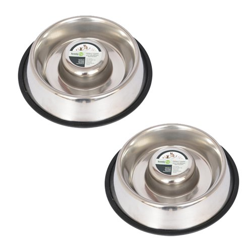 Iconic Pet Set of 2 Stainless Steel Anti-Skid Slow Feed Pet Bowl for Dogs
