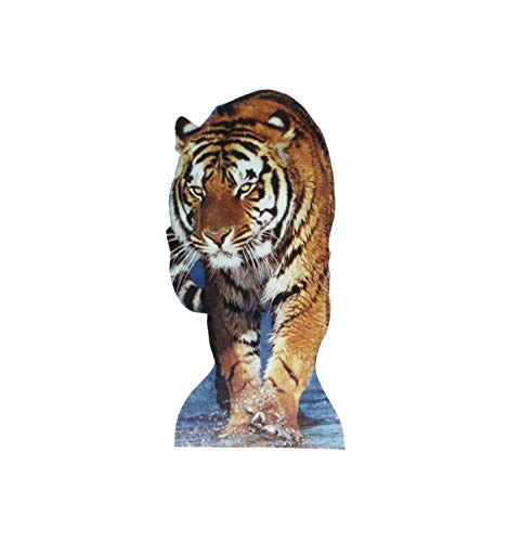 Advanced Graphics Tiger Life Size Cardboard Cutout Standup
