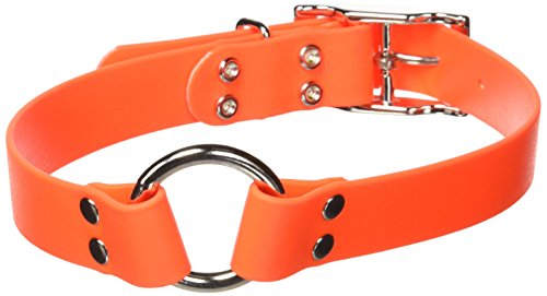 Remington Orange 1-Inch by 22-Inch Waterproof Dog Collar