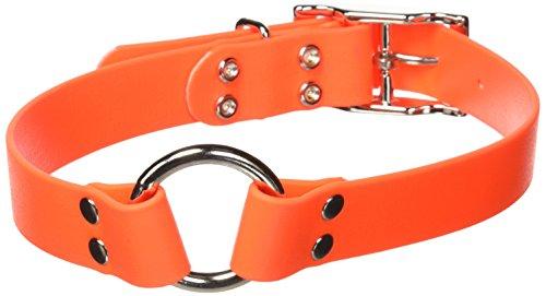 Remington Nylon Dog Collar - Remington Orange 1-Inch by 22-Inch Waterproof Dog Collar