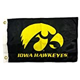 NCAA Iowa Hawkeyes Boat and Golf Cart Flag