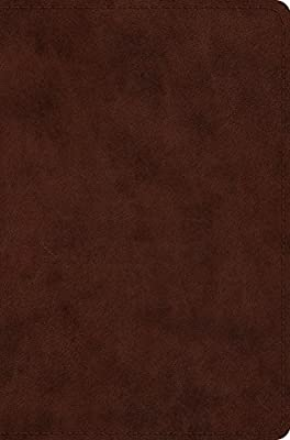 Holy Bible: Esv, Brown, Compact Trutone: Crossway Bibles
