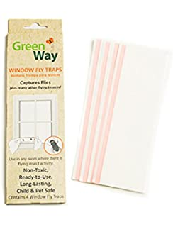 GreenWay Window Fly Trap - 4 traps per box | Heavy Duty Glue, Safe,