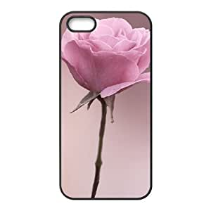 Affection Rose 1 iPhone 5,5S Case Black Kimberly Kurzendoerfer