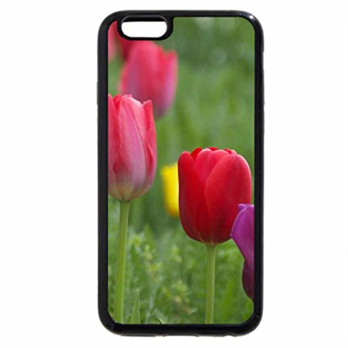 iPhone 6S / iPhone 6 Case (Black) Tulips For My Week-end
