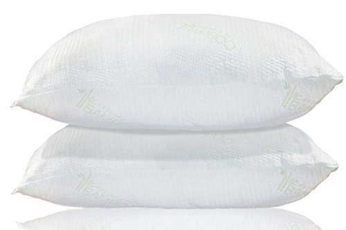 Bamboo Pillow | Queen | USA Designed and Filled | Best Premi