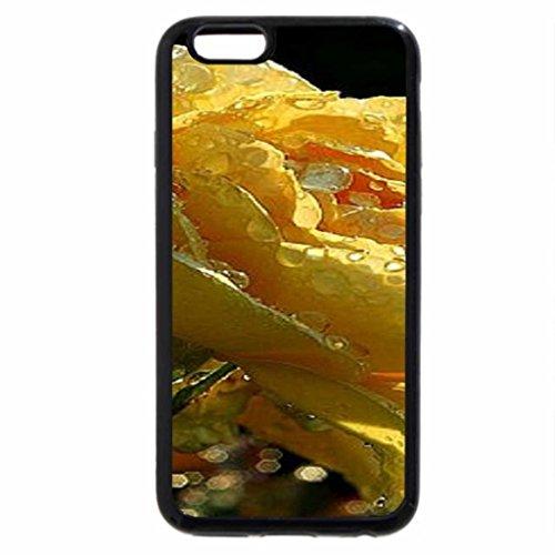 iPhone 6S / iPhone 6 Case (Black) Yellow rose