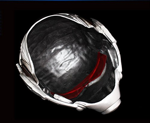 Amazon.com : meg 347g Ant Man Helmet Mask Cosplay Halloween Mask Collection Mascaras Mask Fallout Slipknot Payday Batman Pure Handmade Man Helmet : Sports & ...