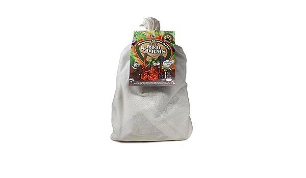 Gusanos de compostaje - 600 rojo Wigglers: Amazon.es: Jardín