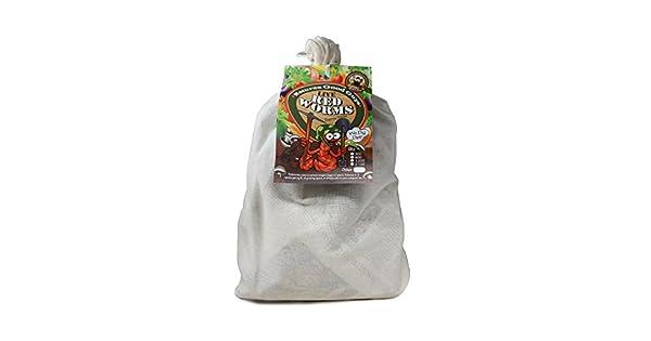 Amazon.com: Gusanos de compostaje – 600 pelucas rojas ...