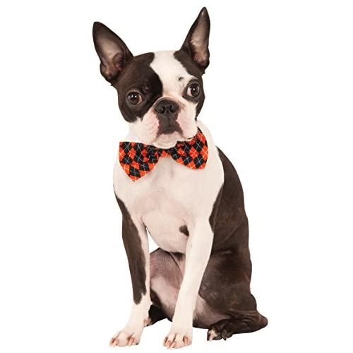 Halloween Argyle Pet Bowtie, Medium/Large