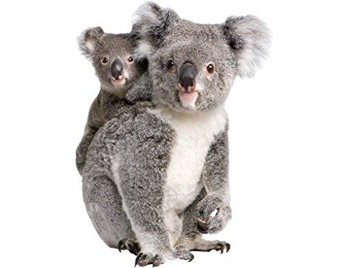Wall Decal Koala Bears, ()