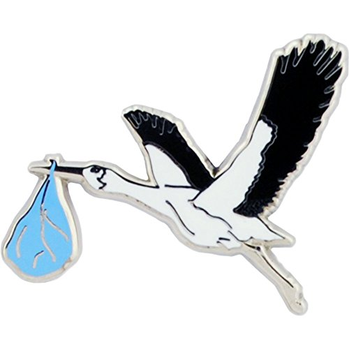 - Stork with Baby Boy Pin 1