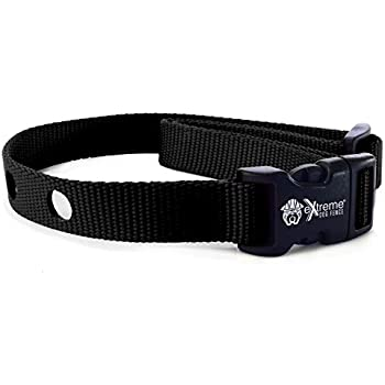 Amazon Com Collarsafe 1 Inch Wide Replacement Collar