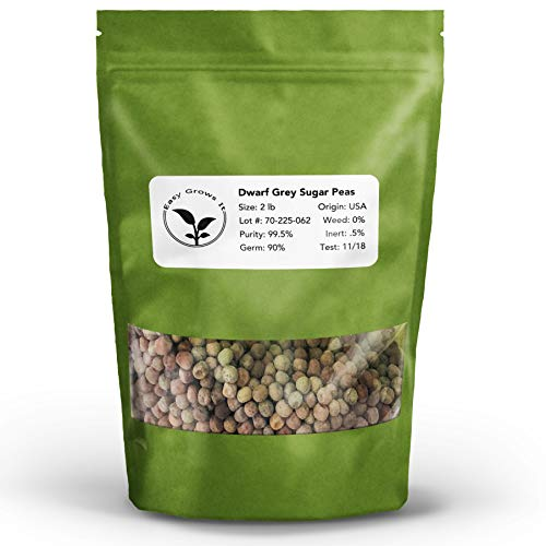 Dwarf Grey Sugar Pea Microgreen Seed 2 lb | Easy Grows It Non-GMO Sugar Peas for Sprouting, Micro Greens, and Gardens