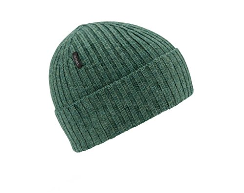 Coal Emerson Merino Wool Knit Beanie Hat -