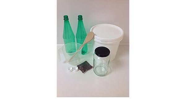 Cerveza de jengibre casa Kit de Fermentación por happykombuchaltd: Amazon.es: Salud y cuidado personal