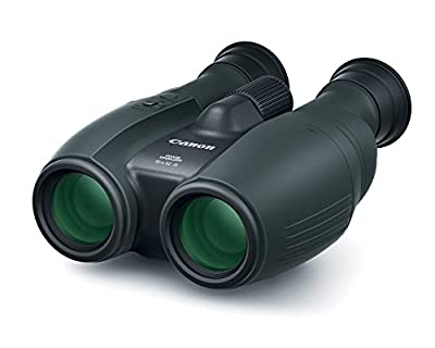 Canon Cameras US 10X32 is Image Stabilizing Binocular, Black (1372C002) from Canon
