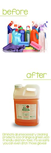 Eco Orange Super 1 Gallon Concentrate - Before and After 2