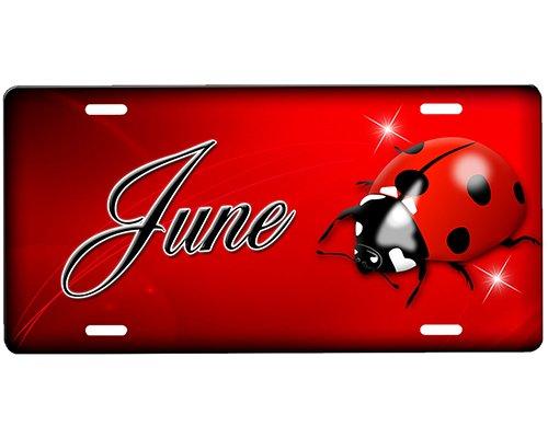 onestopairbrushshop Ladybug License Plate ()
