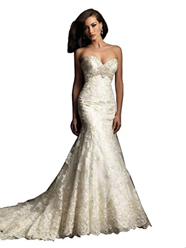 Elley Women's V-Neck Lace Applique Sleeveless Full Length Mermaid Elegant Formal 2016 Winter Wedding Bridal Dress White US16