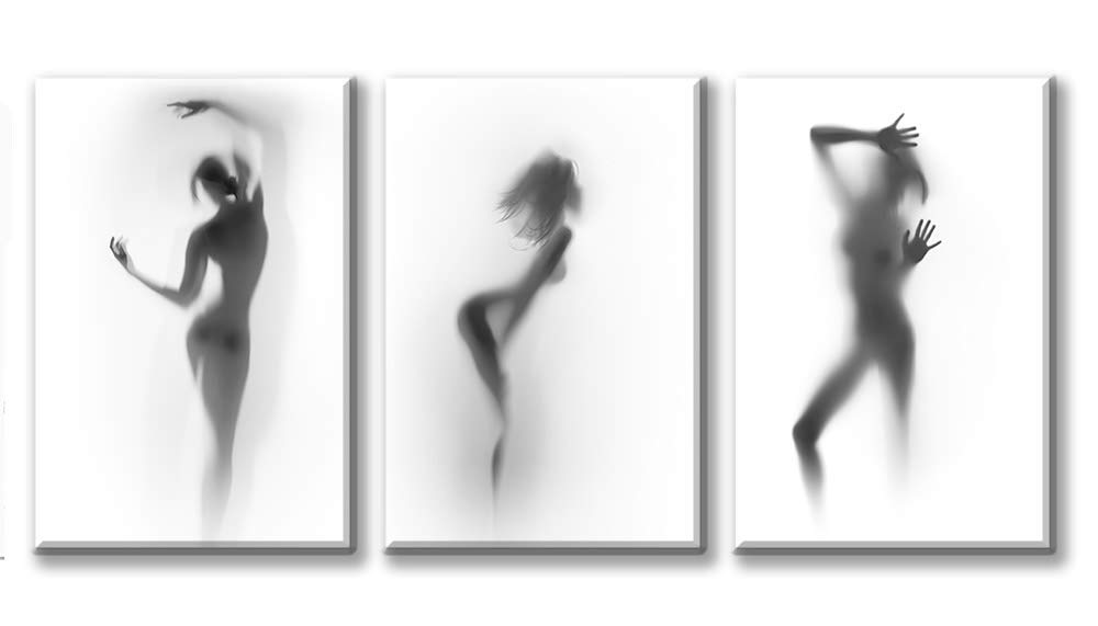 DJSYLIFE-Sexy Nude Woman Photos Printed on Canvas for Bedroom Bathroom Decoration,Naked Girl in The Shower Hazy Shadow Wall Art,3 Panels Modern Abstract Art Painting for Home Decor,Ready to Hang-A02