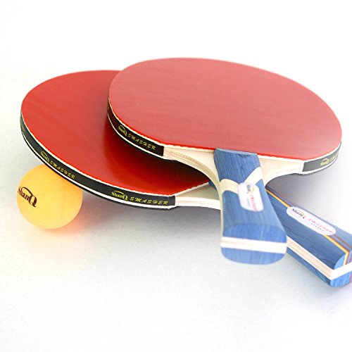 ShamQ 4player Ping Pong Paddle Set - For Speed Control Spin Indoor Outdoor - 4 Professional Table Tennis Blades 8 Balls and A Storage Box
