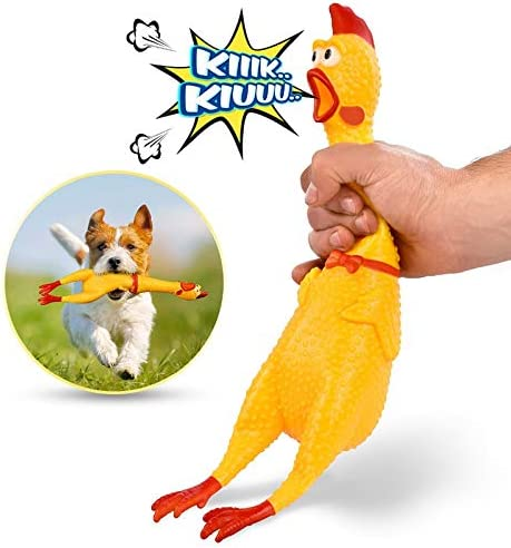: Screaming Chicken, Squeezed by Yellow Rubber