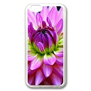 Armener iPhone 6 Plus (5.5 inch) Transparent Sides Rubber Shell TPU Case With Purple Chrysanthemum-2