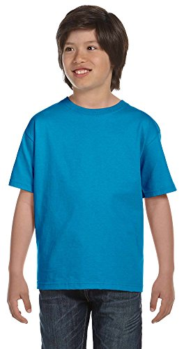 Fruit of the Loom Youth 100% Cotton Lofteez HD T-Shirt, Large, PACIFIC (Loom Lofteez Youth T-shirt)