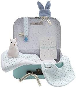 Regalo bebé recién nacido hecho a mano - Maleta regalo azul con ...