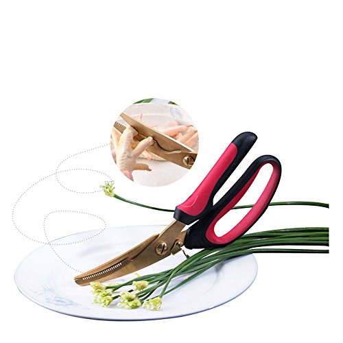 10'' Kitchen Scissors Stainless Steel Multifunction Kitchen Shears Heavy Duty Poultry Chicken Bone Scissors 2CR13